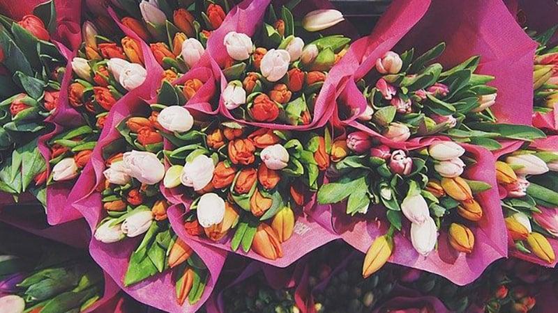 可愛らしい花々